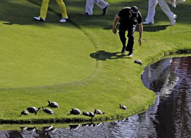 Sergio Garcia, of Spain, tries to chase a turtle back into the pond on the 14th hole during a practice round for the Masters.