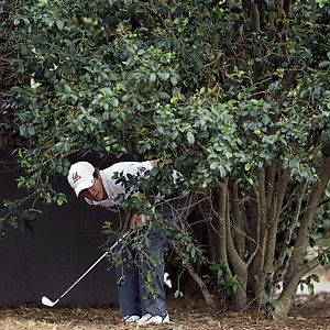 Amateur Michael Weaver looks around a tree before taking his shot in the rough off of the first fairway during the second round of the Masters.