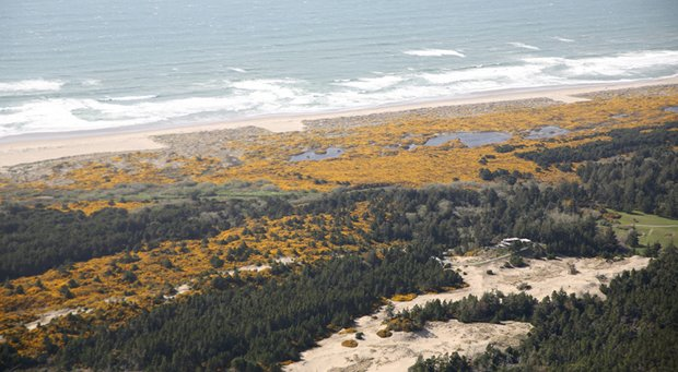 A 27-hole municipal course in Bandon Dunes would be located on a sandy, partially wooded stretch of ground six miles south of town center, overlooking a lagoon and coastal barrier sand bar.