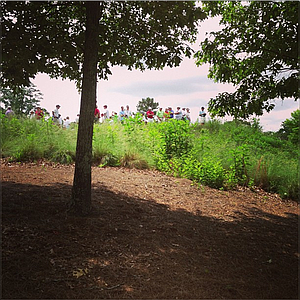 Fans look down on the fourth green, where Ollie Schniederjans and Cory Whitsett both birdied.