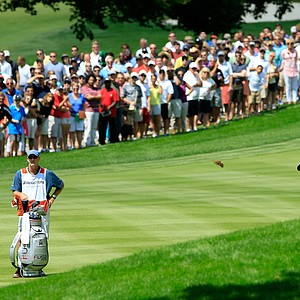Tiger Woods hits from the first fairway as caddie Joe LaCava looks on during the final round of the WGC-Bridgestone Invitational at Firestone Country Club.