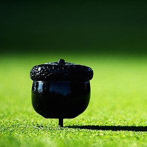 A detail shot of an acorn tee marker is seen during a practice round prior to the start of the 95th PGA Championship at Oak Hill Country Club.