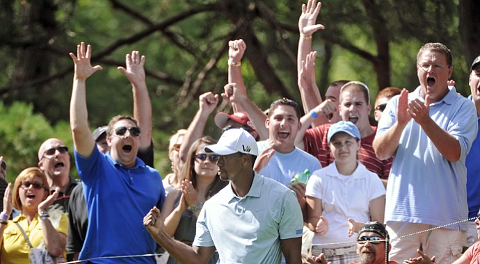 Tiger Woods during the 2013 WGC-Bridgestone Invitational at Firestone in Akron, Ohio.
