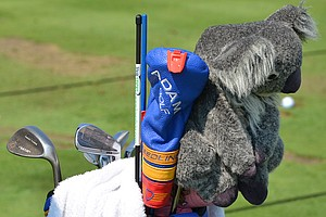 Aaron Baddeley's koala bear watches over Baddeley's set of Adams Idea MB prototype irons.