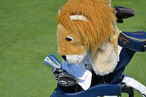 Ernie Els' lion headcover guards his Callaway Razr X Muscleback irons and Mack Daddy 2 wedges.