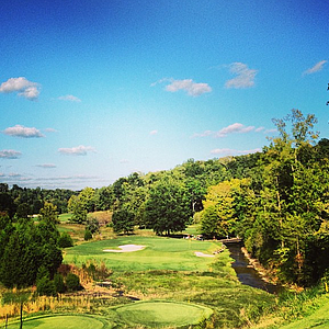 The par-3 14th at The Golf Club of Tennessee.