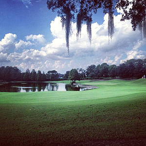 The approach shot in the 12th green at Isleworth Golf and Country Club.