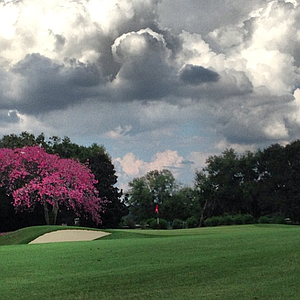 The 16th hole at Isleworth.