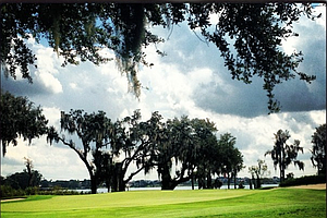 The ninth green at Isleworth during the Isleworth Collegiate Invitational.