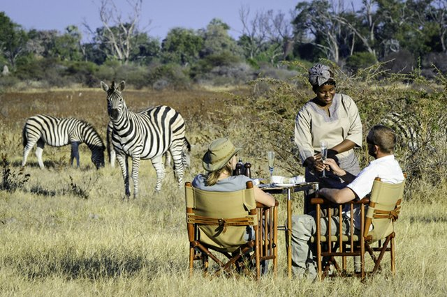 Winter Park-based Luxury Tours takes locals on extravagant adventures in the heart of Africa.