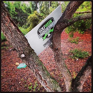 A True Temper sign was mysteriously placed in a tree to the side of the first tee at Oak Creek in Irvine, Calif.