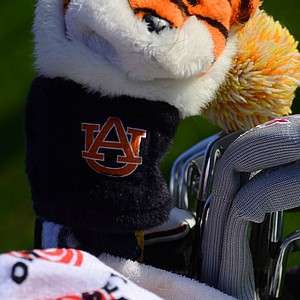 Callaway's Brandon Stengel sports an Auburn headcover on his bag, a day after the Tigers likely clinched a spot in the BCS National Championship in college football.