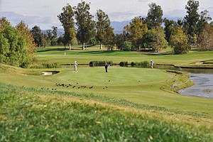 A scenic look at the green at the par-3 third hole during the final round of the Industry Cup at Oak Creek GC in Irvine, Calif.