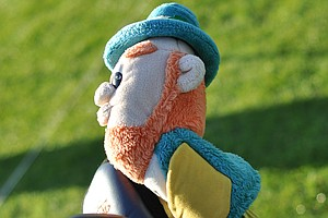 An array of headcovers were on the range prior to the start of the second round at the Industry Cup, including this of an Irishman.