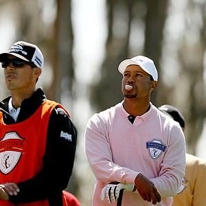 Tiger Woods, representing Team Albany, blows a bubble with his gum while waiting on the tee box at No. 3 during the Tavistock Cup at Isleworth Country Club.