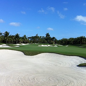 The new 11th hole at Doral.