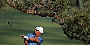 Augusta National loses 'Eisenhower Tree'
