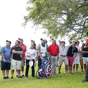 Patrick Reed at Trump National Doral's renovated Blue Monster course during Sunday's final round of the 2014 WGC-Cadillac Championship.