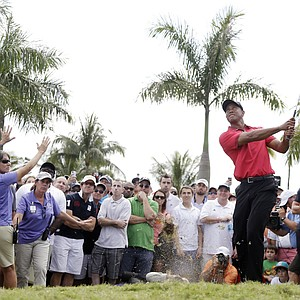Tiger Woods at Trump National Doral's renovated Blue Monster course during Sunday's final round of the 2014 WGC-Cadillac Championship.