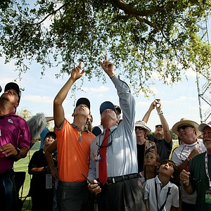 Seung-Yul Noh talks with rules official Steve Rintoul at No. 18 of Bay Hill Golf Club, where Noh's ball got stuck in a tree during the third round of the Arnold Palmer Invitational.