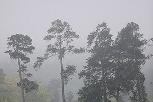 Rough weather forced an early end to Masters practice Monday at Augusta National.