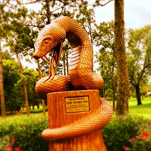 The snake, letting you know you are entering The Snake Pit on the Copperhead course on Saturday during AJGA's TaylorMade-Adidas Golf Junior at Innisbrook hosted by Sean O'Hair.