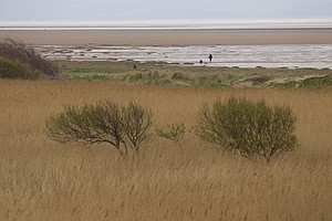 The shoreline alongside Royal Liverpool in Hoylake, host of the 2014 British Open.