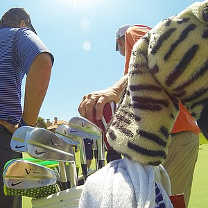 Charl's Schwartzel's Nike VR Pro Blades share his bag with a zebra headcover that tops his driver, spotted at TPC Sawgrass during the PGA Tour's 2014 Players Championship in Ponte Vedra Beach, Fla.