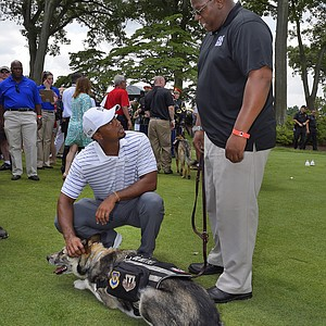 Tiger Woods meets a service dog at the opening ceremonies on the eve of the PGA Tour's 2014 Quicken Loans National.
