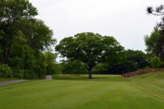 The fourth hole at Keller Golf Course in Maplewood, Minn., after 2014 renovations.