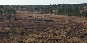 Kidd picked to build second course at Sand Valley