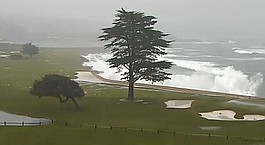 Klein: Pebble Beach's 18th just fine without cypress tree