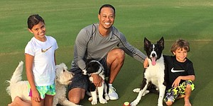 PHOTOS: Tiger Woods welcomes another dog to family