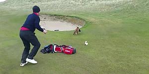VIDEO: Golfer watches as fox swipes wallet